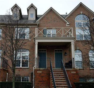 Northville Condo/Townhouse For Sale: 39647 Springwater Dr.