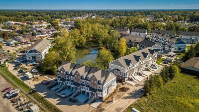 Ann Arbor Condo/Townhouse For Sale: 2545 West Towne St