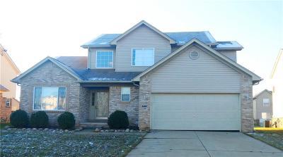 Single Family Home For Sale: 33367 Swan Lake Crt