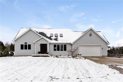 Onondaga Single Family Home For Sale: 12910 Onondaga Rd