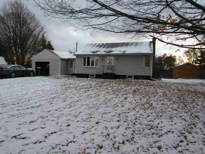 Hillsdale County Single Family Home For Sale: 4247 Hudson Rd