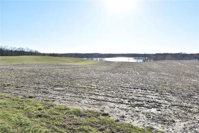 Somerset MI Residential Lots & Land For Sale: $174,900