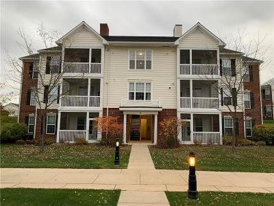 Ann Arbor Condo/Townhouse For Sale: 951 E Summerfield Glen Cir