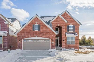 Northville Single Family Home For Sale: 47733 Fieldstone Dr