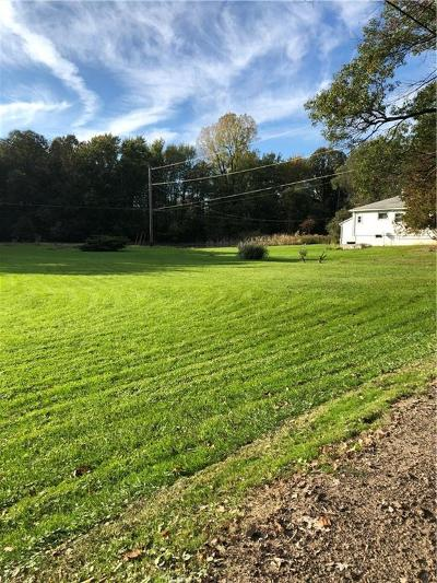 Northville Single Family Home For Sale: 48443 Nine Mile Rd