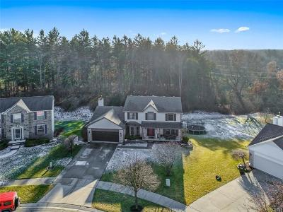 Milford Single Family Home For Sale: 943 Meadowbrook Way