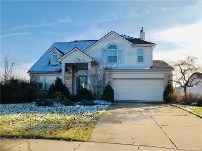 Ann Arbor Single Family Home For Sale: 2279 Courtney Circle Crt