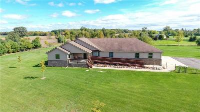 Washtenaw County Single Family Home For Sale: 10898 Braun Rd