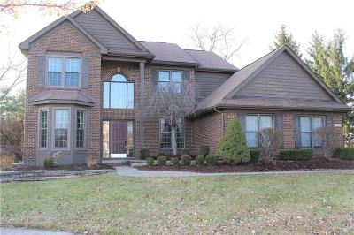 Canton Single Family Home For Sale: 1045 Bristol Crt