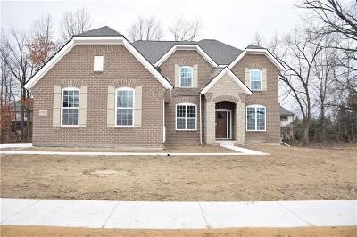 Farmington Hill Single Family Home For Sale: 22335 Diamond Crt N