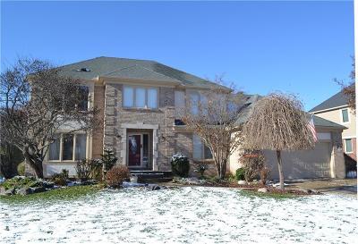 Farmington Hill Single Family Home For Sale: 31045 Pine Cone Dr
