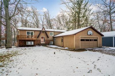 Brighton Single Family Home For Sale: 1699 Clark Lake Rd