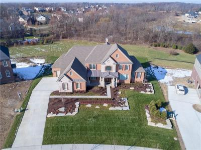 Northville Single Family Home For Sale: 50494 Hunters Trl