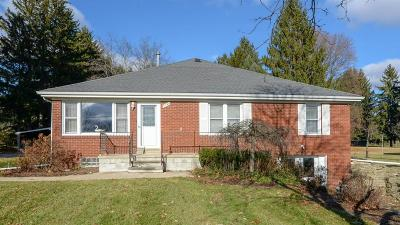 Washtenaw County Single Family Home For Sale: 3740 Pleasant Lake Rd
