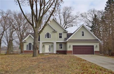 Southfield Single Family Home For Sale: 21918 Fairway Dr
