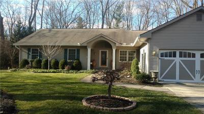 Southfield Single Family Home For Sale: 24871 Edgemont Dr