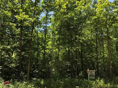 South Lyon MI Residential Lots & Land For Sale: $214,900