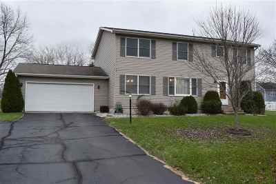 Lenawee County Single Family Home For Sale: 490 Meadowbrook Dr