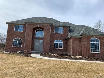 Novi Single Family Home For Sale: 29929 Martell Crt