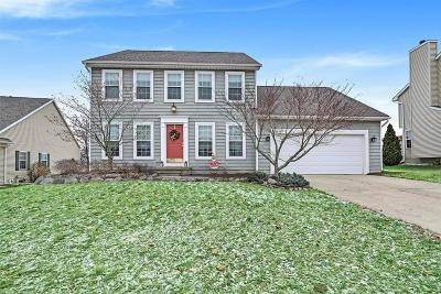 Dexter Single Family Home Contingent - Financing: 3658 View Dr