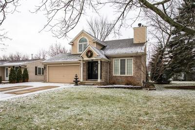 Wixom Single Family Home For Sale: 1425 Flamingo St