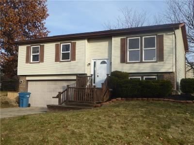 Lenawee County Single Family Home For Sale: 602 Johns Dr
