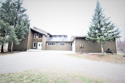 Belleville Single Family Home For Sale: 19750 Haggerty Rd