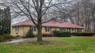 Washtenaw County Single Family Home For Sale: 830 W Willis Rd