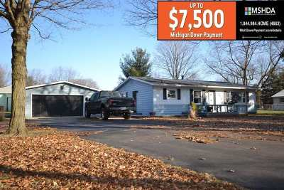 Lenawee County Single Family Home For Sale: 3828 Boyd Street