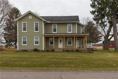 Lenawee County Single Family Home For Sale: 9589 Clinton Macon Rd