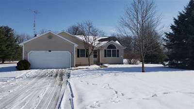Lenawee County Single Family Home For Sale: 4635 Wisner Highway