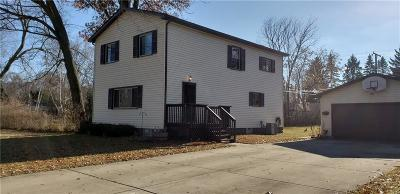 Wixom Single Family Home For Sale: 2951 Shewbird