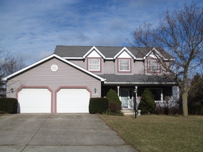 Lenawee County Single Family Home For Sale: 3330 Hartley Dr.