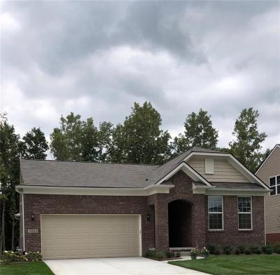 Canton Single Family Home For Sale: 4389 Brookside