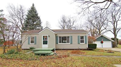 South Lyon Single Family Home For Sale: 25051 Martindale Rd