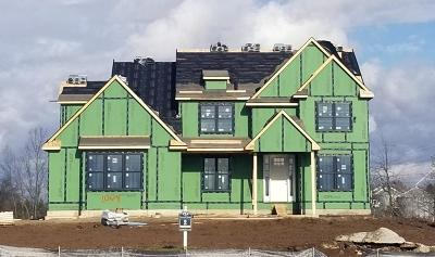 Ann Arbor Single Family Home For Sale: 1004 Cornwell Dr