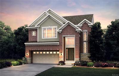 Northville Single Family Home For Sale: 19050 Denali Cir