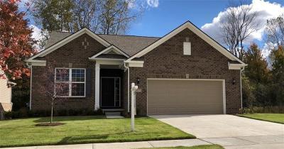Canton Single Family Home For Sale: 50286 Alden
