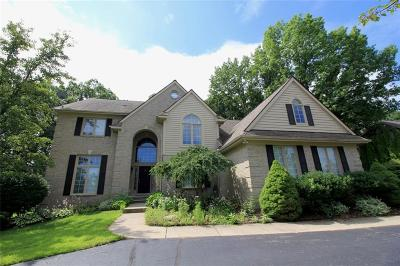 West Bloomfield Single Family Home For Sale: 5975 Orchard Woods Dr