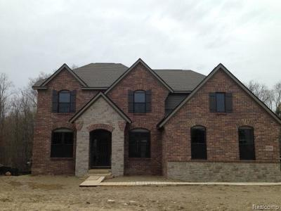 West Bloomfield Single Family Home For Sale: 6306 Branford Dr