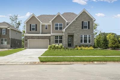 Novi Single Family Home For Sale: 25955 Oberlin Blvd