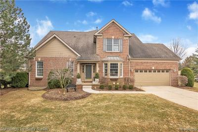 Northville Condo/Townhouse For Sale: 44481 Broadmoor Blvd