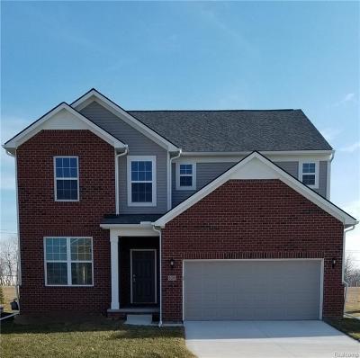 Ann Arbor Single Family Home For Sale: 838 Groveland Cir