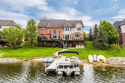 Northville Single Family Home For Sale: 17577 Parkshore Dr