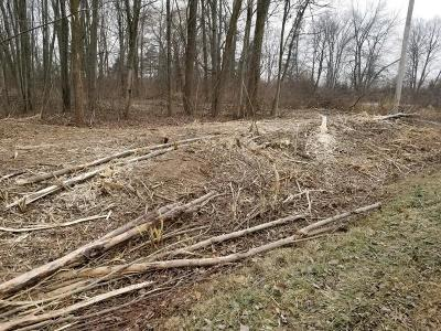 South Lyon MI Residential Lots & Land For Sale: $160,000
