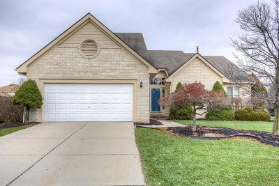 Novi Single Family Home For Sale: 43313 Ashbury Dr