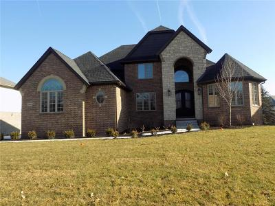 South Lyon Single Family Home For Sale: 10653 Stoney Point Dr