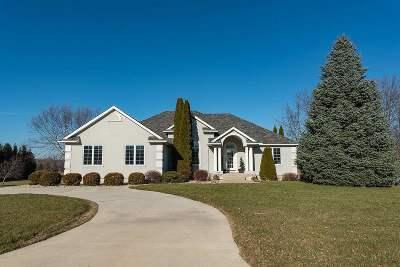 Lenawee County Single Family Home For Sale: 1238 Scott Ridge
