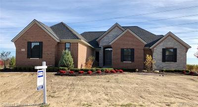 Northville Single Family Home For Sale: 51265 Chamberlin Crt