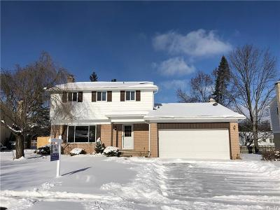 Northville Single Family Home For Sale: 312 Ely Dr N